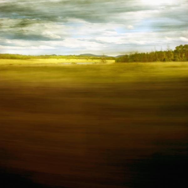 landscape 020.jpg