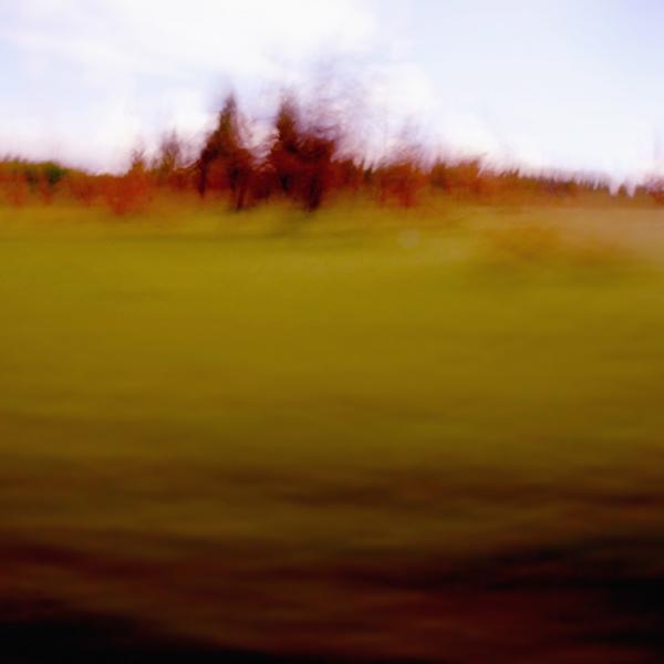 landscape 023.jpg
