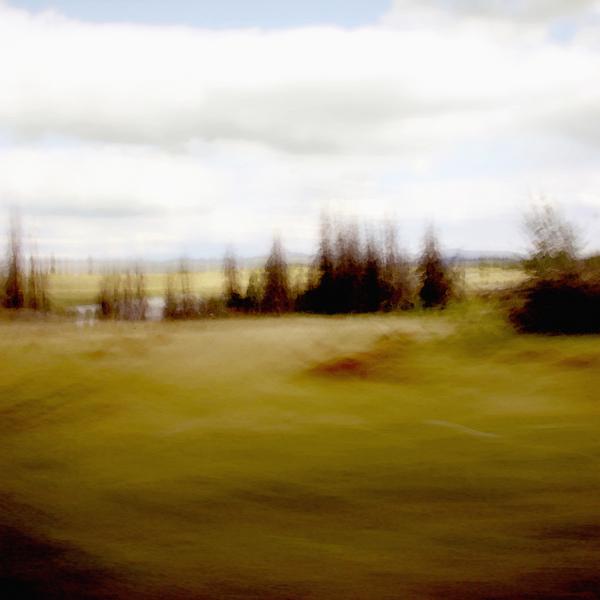 landscape 021.jpg