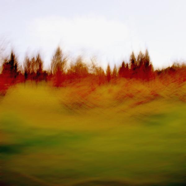 landscape 024.jpg
