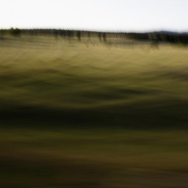 landscape 026.jpg