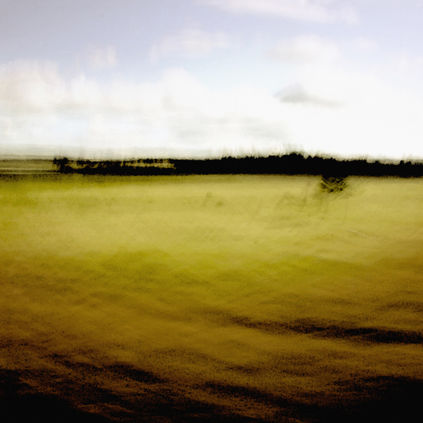landscape 025.jpg