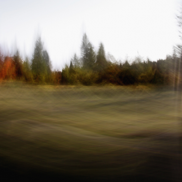 landscape 027.jpg
