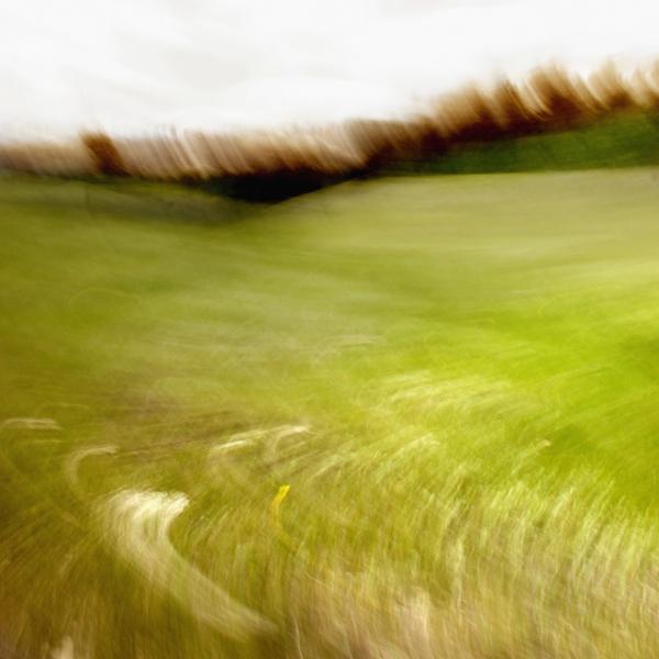 landscape 028.jpg