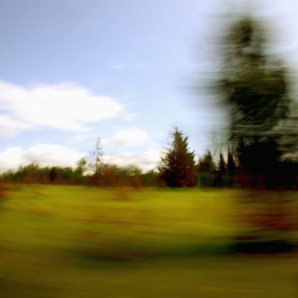 landscape 031.jpg