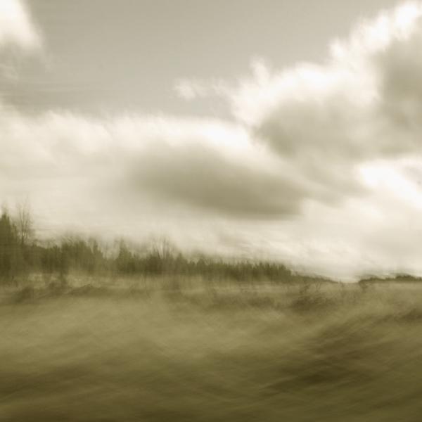 landscape 033.jpg