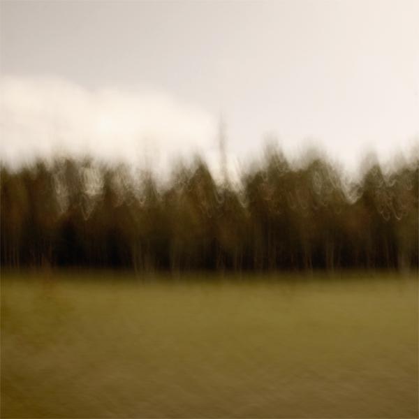 landscape 034.jpg