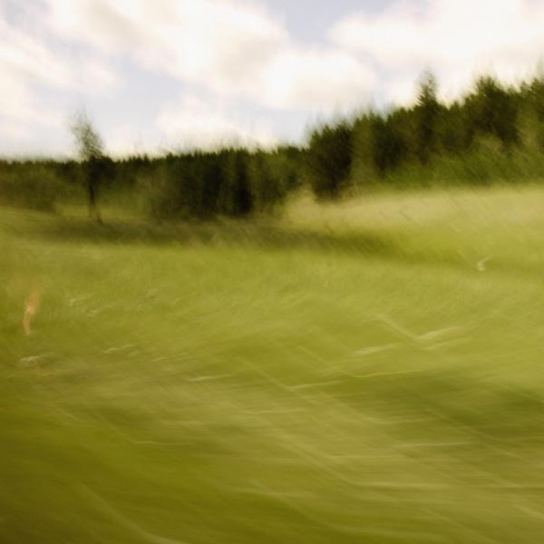 landscape 046.jpg