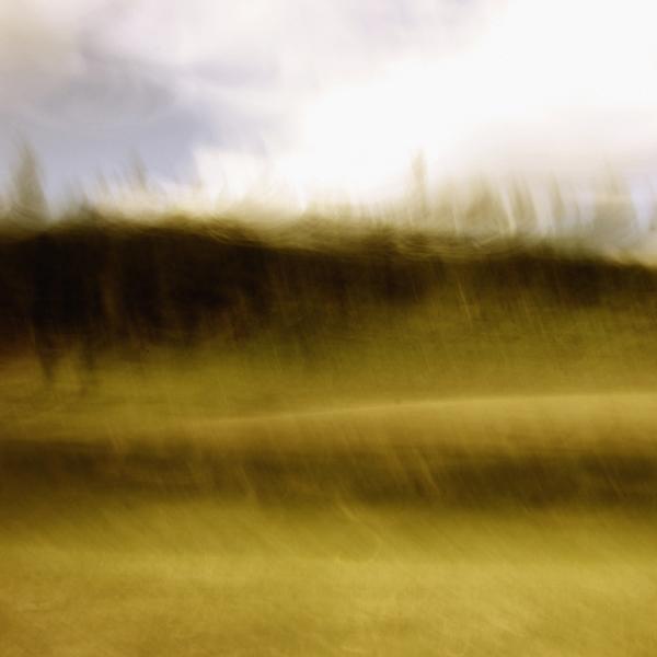 landscape 047.jpg