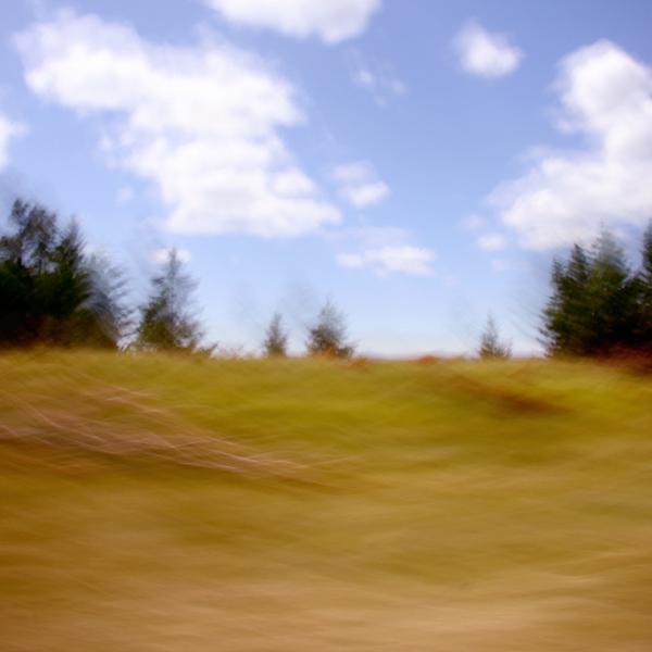 landscape 061sm.jpg