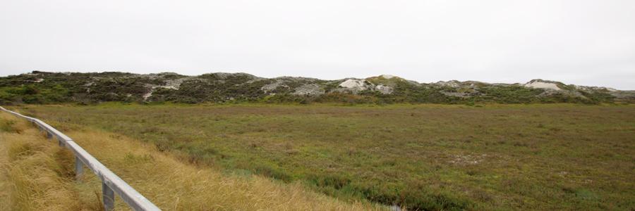 Panorama 002_sm.jpg