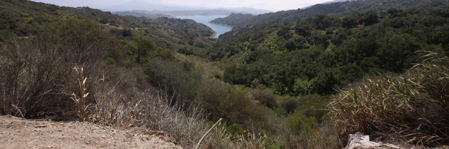 Panorama 043_sm.jpg