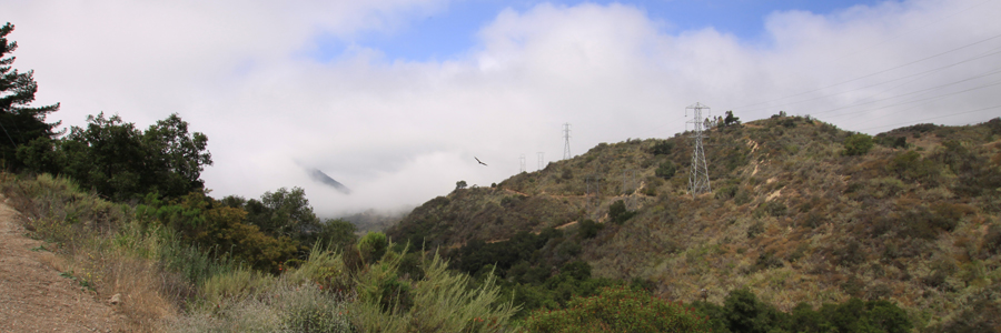 Panorama 042_sm.jpg