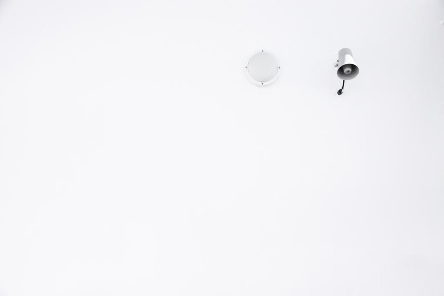 white 004sm.jpg