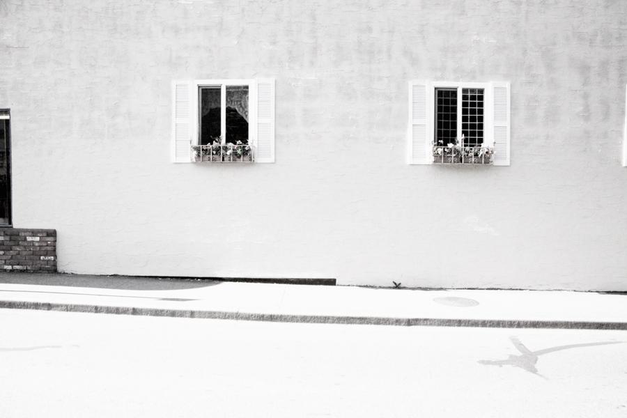 white 016sm.jpg