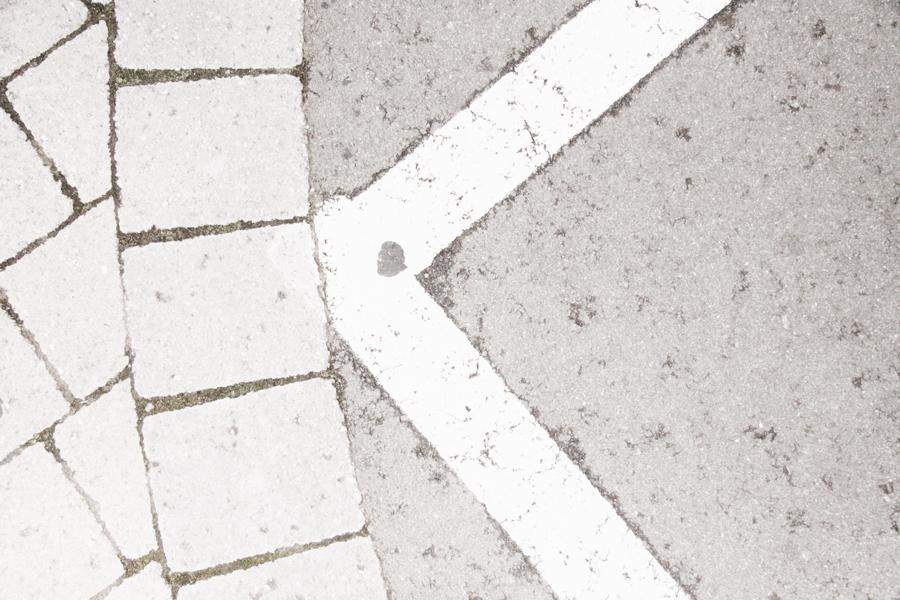white 019sm.jpg