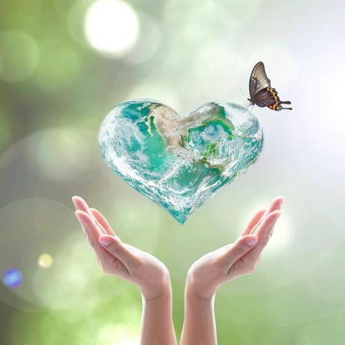 World Heart In Hands.jpg