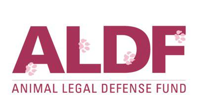 Animal Legal Defense Fund Branding Exercise Example