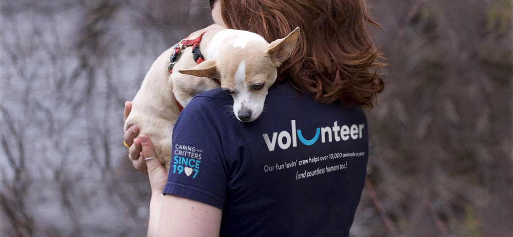 Marin Humane brand & logo design and messaging for volunteer tshirts