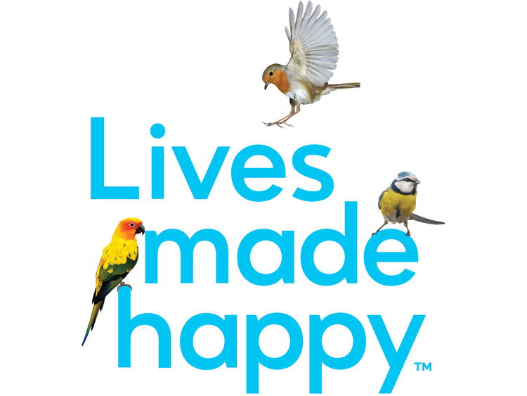 Marin Humane brand identity & logo design. Tagline Lives Made Happy™