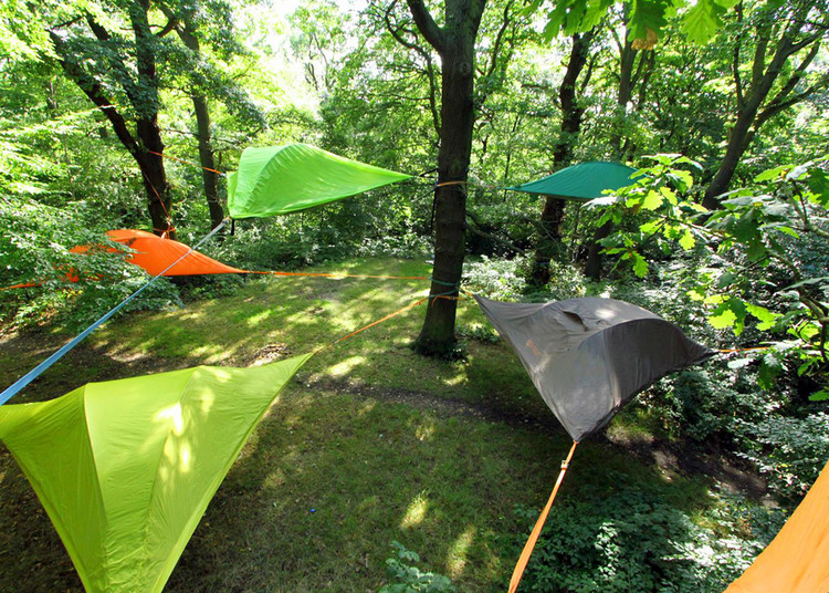 next-level-camping-euphoria-tentsile.jpg