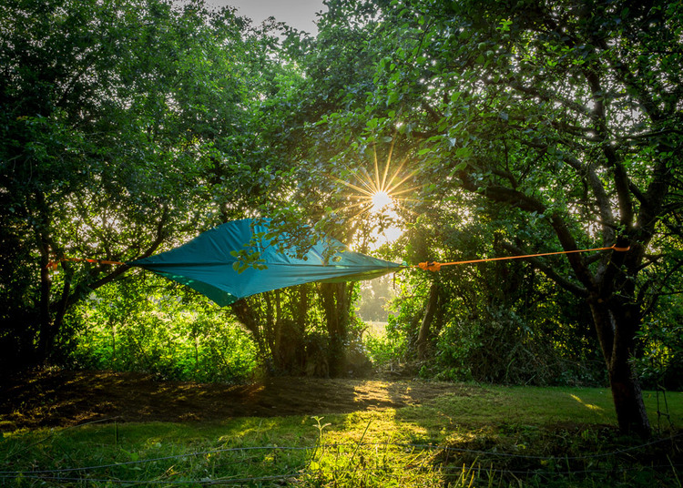 next-level-camping-tentsile-euphoria.jpg