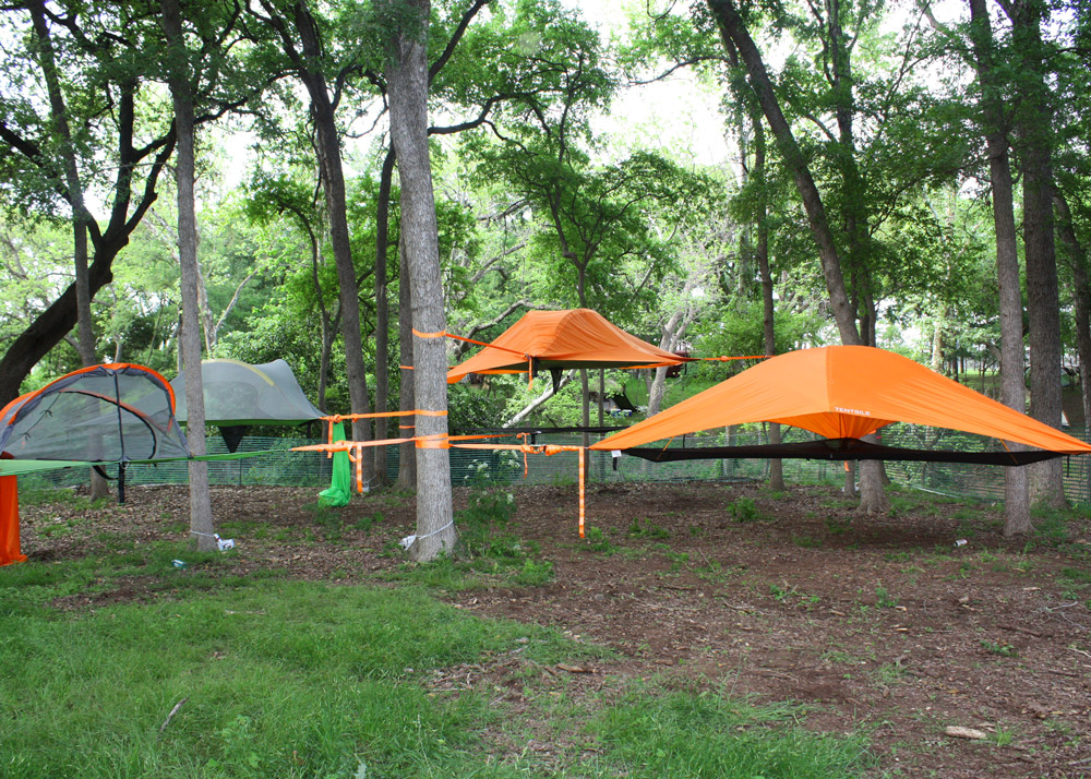 euphoria-tree-camping-tentsile.jpg