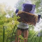 Beekeeping Basics.jpg