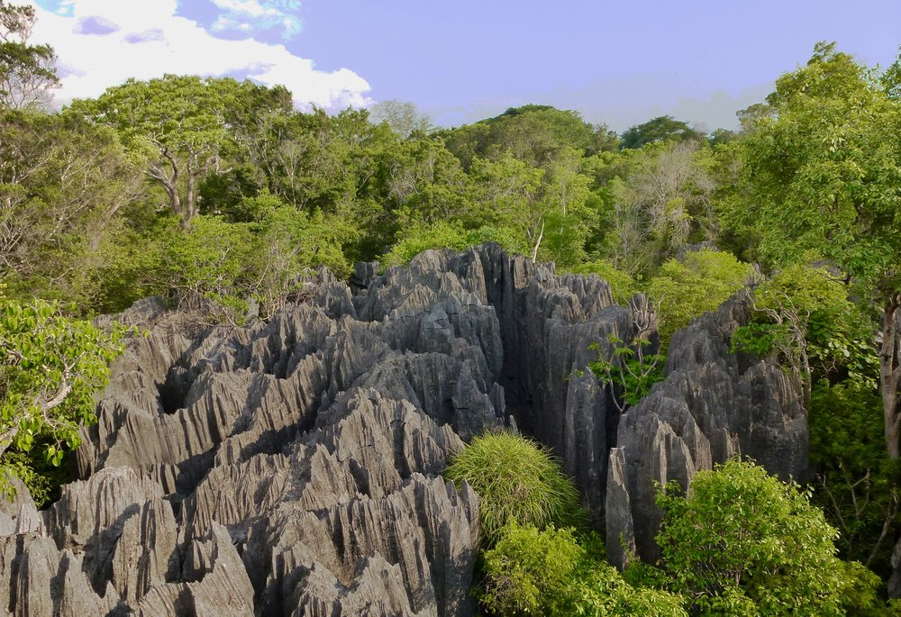 Tsingy de Bemaraha National Park, one of Madagascar's largest protected areas.