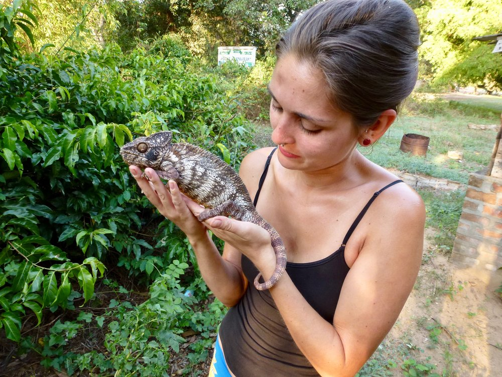 Author with chameleon in camp