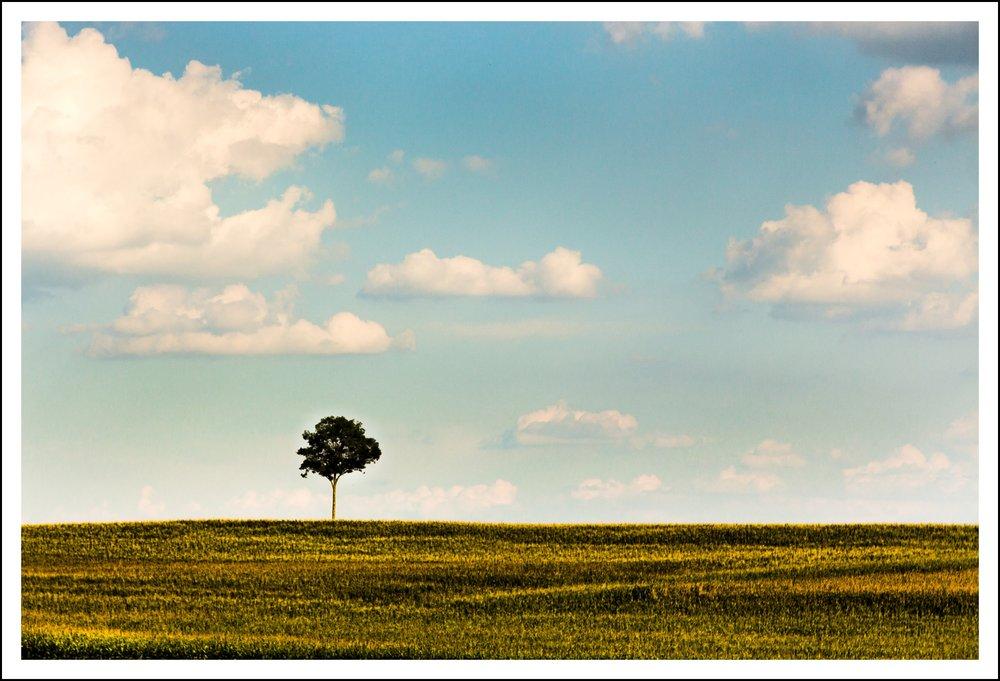 Andrew Bird Pocono, Stroudsburg, Lehigh Valley Landscape Photographer