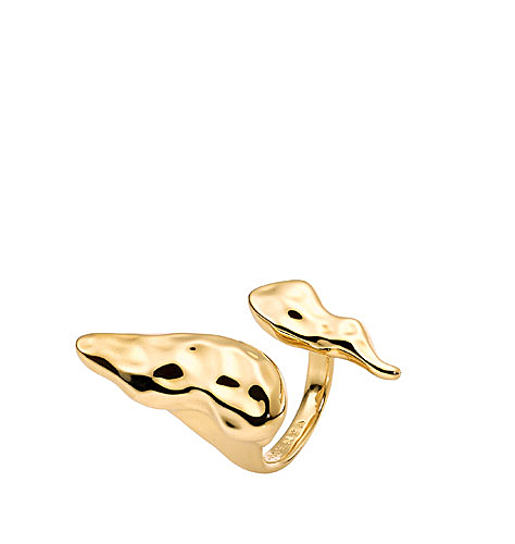 casha-for-cadenzza-liquid-skies-ring-gold-gold-plated-1.jpg
