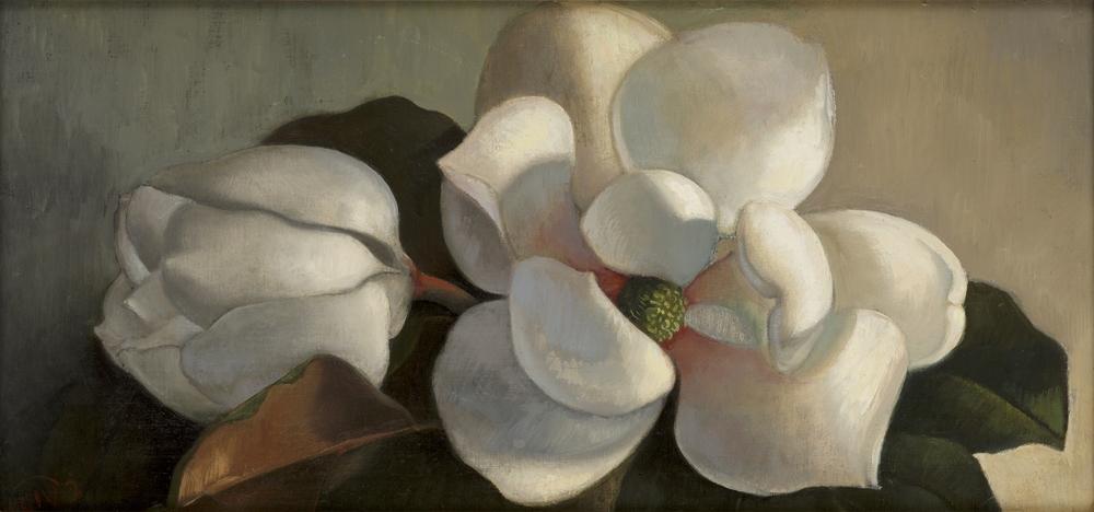 Magnolia 1.jpg