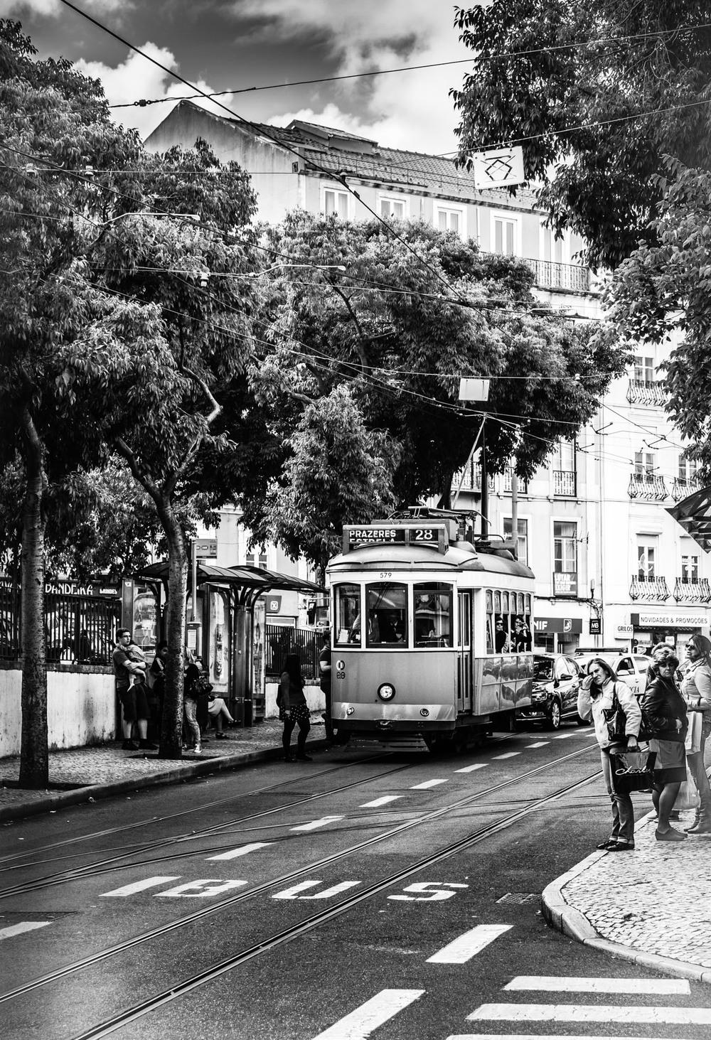 Portuguese Rail Car #2