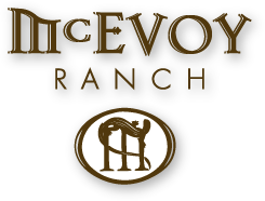 McEvoy logo-screen.png