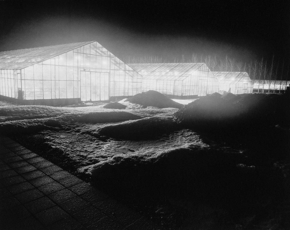 Greenhouse02_W.jpg