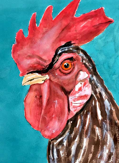 """""""Fine Feathered Friend"""" 14 x 11 Watercolor  Available: $199     BUY PRINTS"""