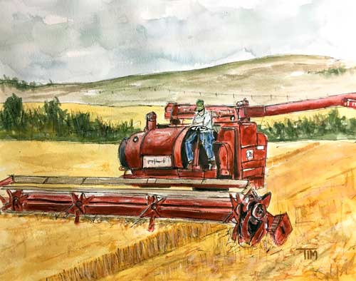 """Let the Harvest Begin""     12 x 15 Watercolor    Available:  $349        BUY PRINTS"
