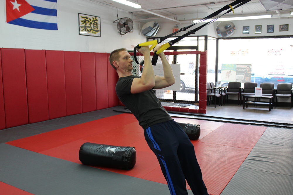 TRX bicep curls are a great way to engage your arms and the core(abs, low back, hips)