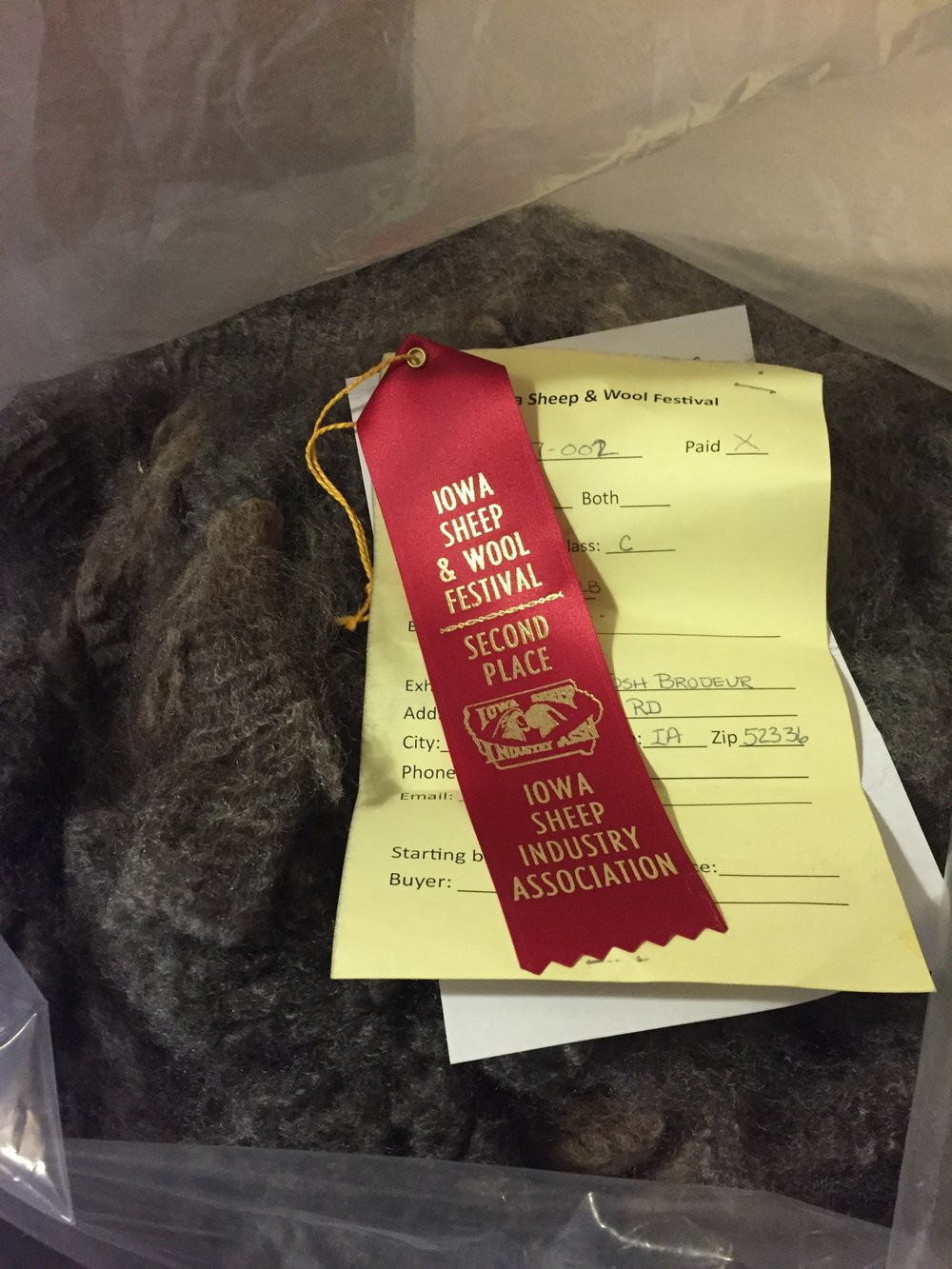 Nora - Second Place: Div 2 Class C; Natural Color Hand Spinning Long Wool