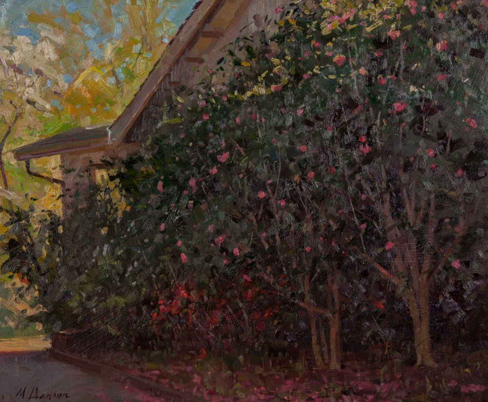 Cezanne-Best Light in the Landscape  'Robin's Camellias' by Marc Hanson