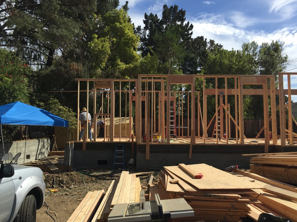 With the walls laid out on the plywood sheathing, it was literally just one day later that we saw the walls magically arise. The garage to the left will be framed last, just before the roof framing starts.