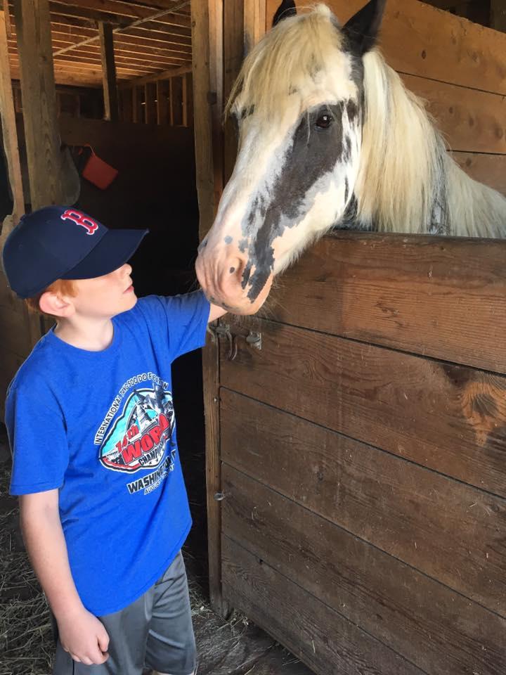 Jessica Lynch horse.jpg