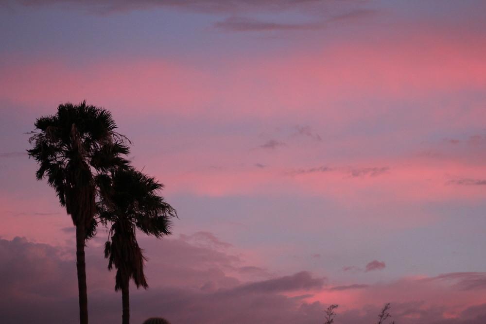 Tucson desert, July 2014.