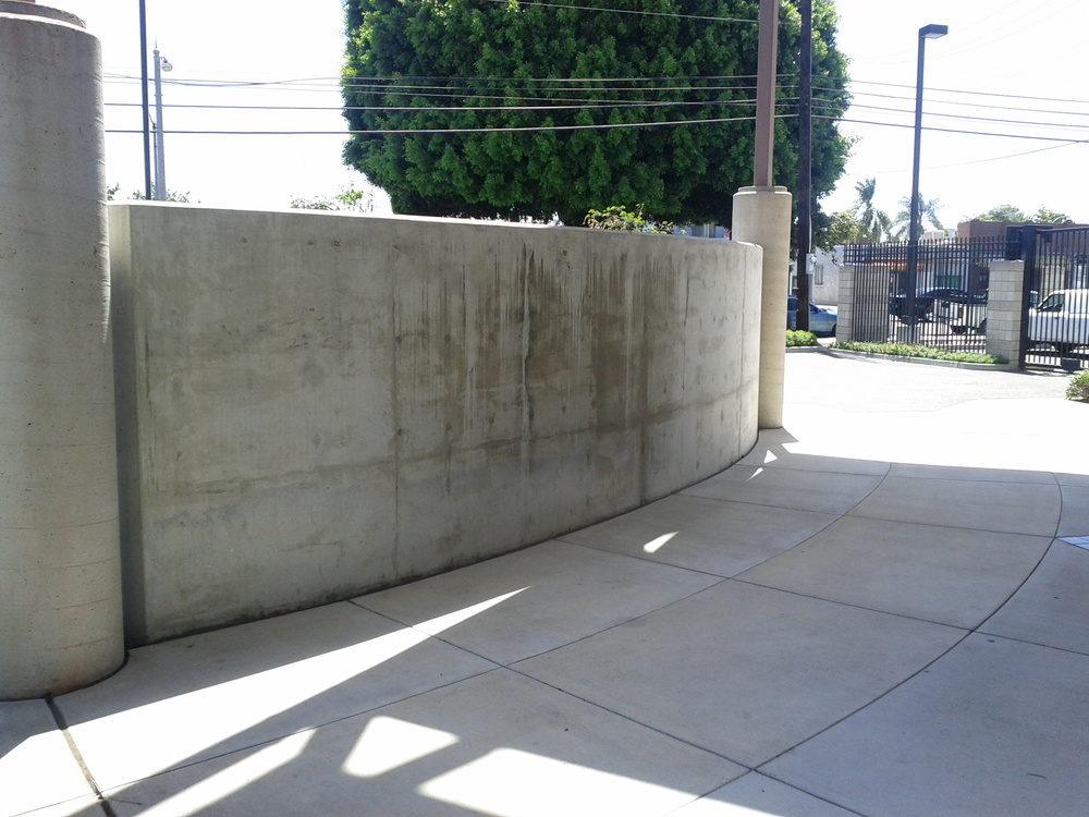 The Blank Wall