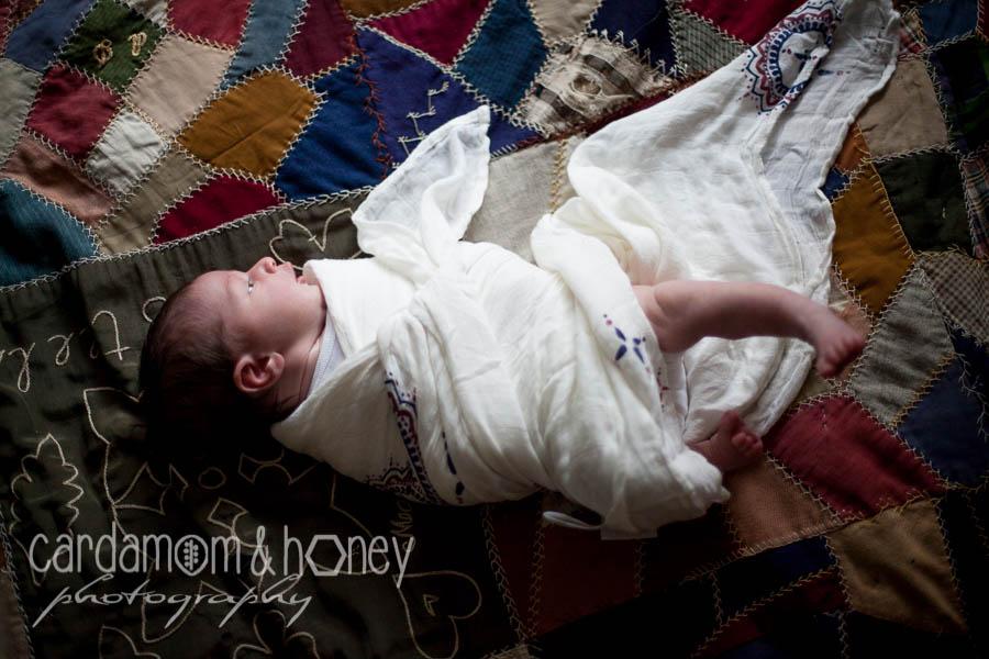 C&HP Family Photography-6945.jpg