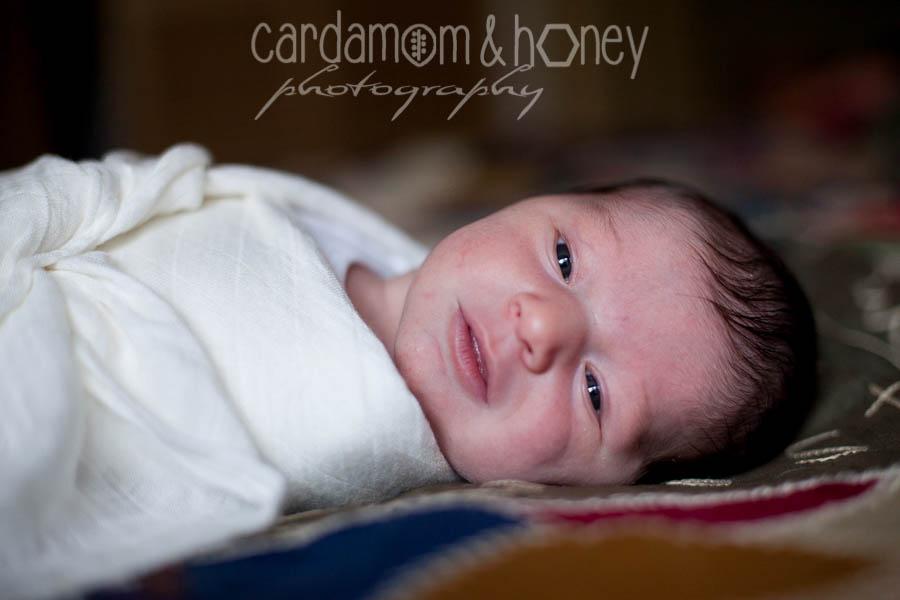 C&HP Family Photography-6957.jpg