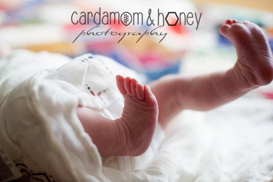 C&HP Family Photography-6961.jpg