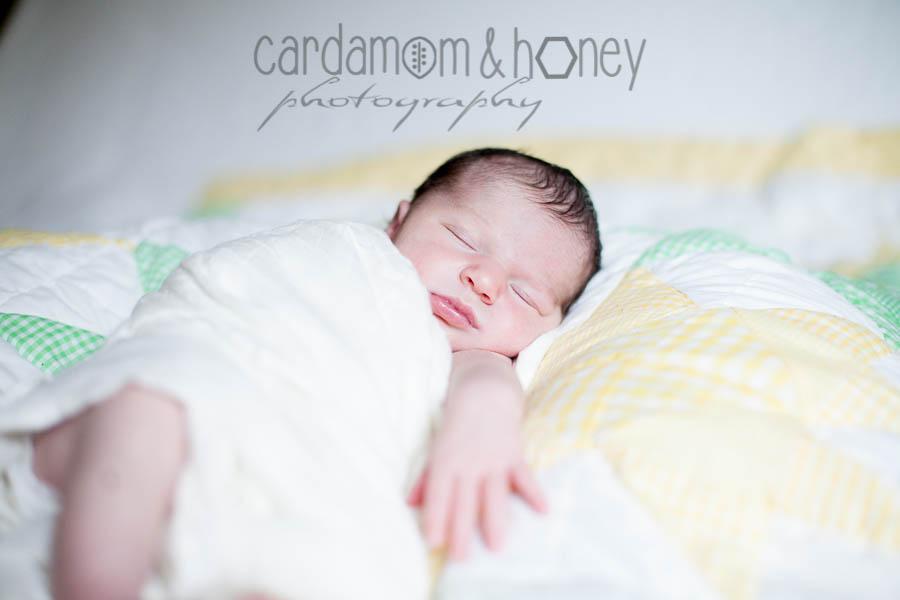 C&HP Family Photography-7033.jpg