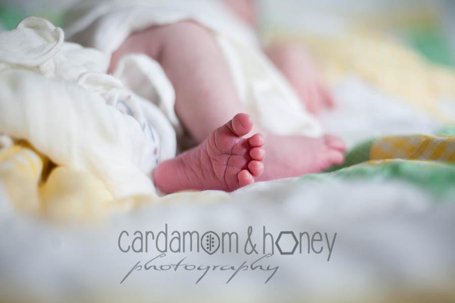 C&HP Family Photography-7084.jpg